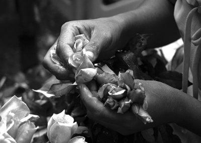A Roses stories (Burma)