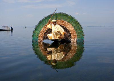 Inle Fishing Bird (Burma)