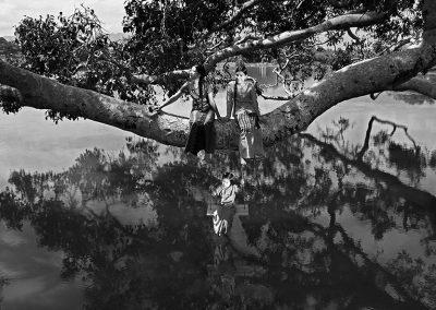 Relaxing tree (Burma)